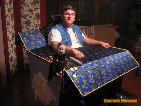 Aladdin Magic Carpet Costume Vidalondon