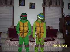 The Twin turtles