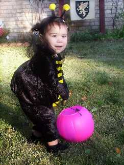 Cutest Bee ever