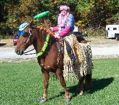 RD the Hula Horse