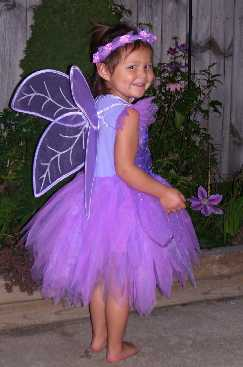 The Perfect Fairy