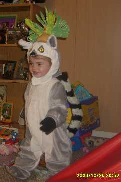King Julian the lemur Madagascar
