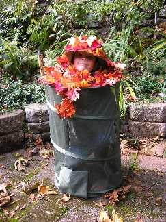 Noah the yard waste bin pic 2