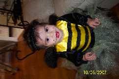 The BUSY Little Bee