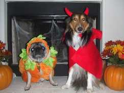 Pumpkin and Devil