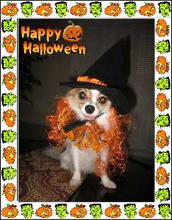 Sophia as the Pumpkin Witch